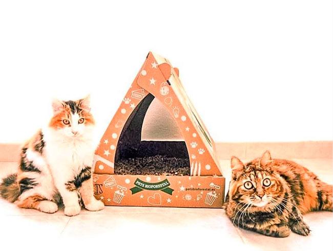 arena ecológica para los gatos