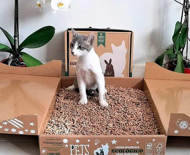 arena biodegradable para gatos