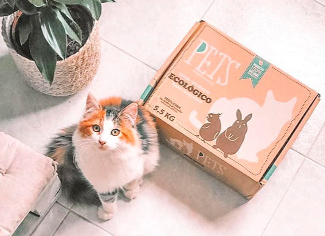 caja arenero de petsbioforestal de arena biodegradable