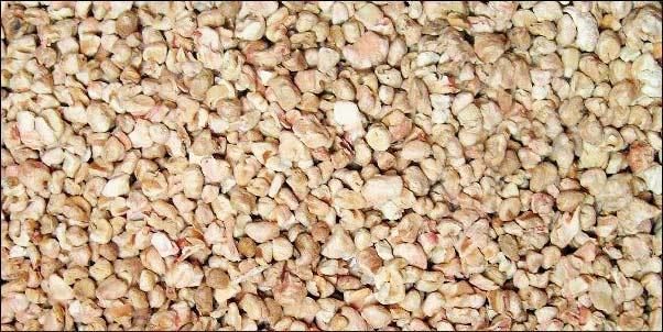 Lecho de maiz para jaula de conejos