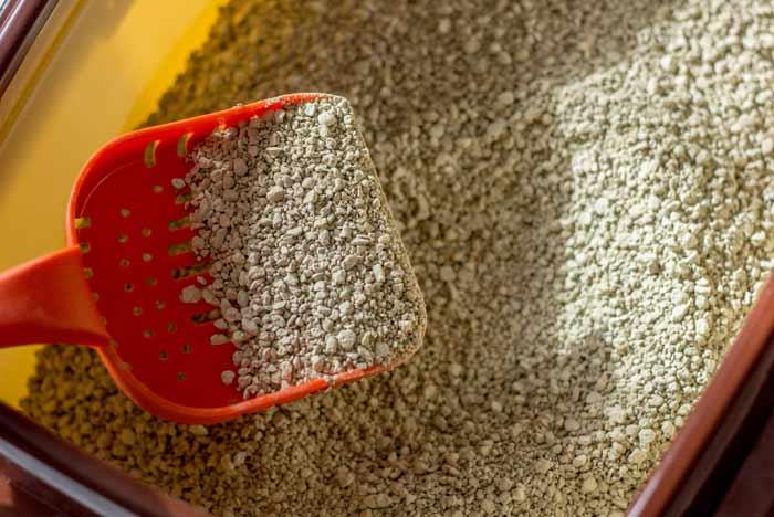 arena sepiolita para gatos