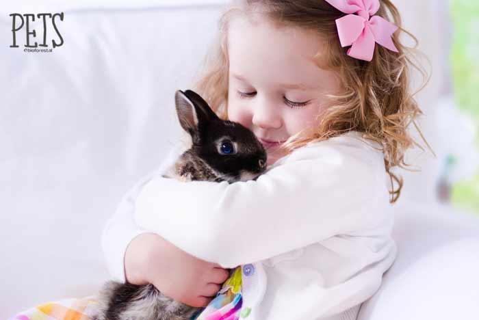 niña juega con conejo enano